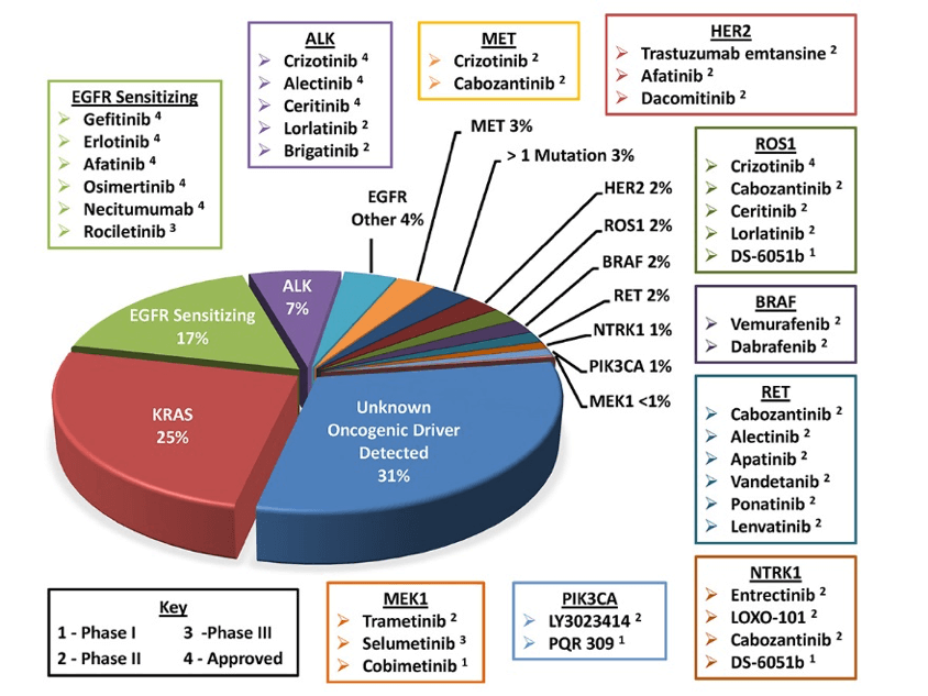 Identified lung cancer biomarker driver mutations and associated FDA-approved targeted therapies