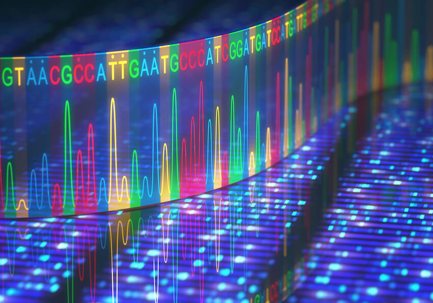 Mutations increase cancer risk