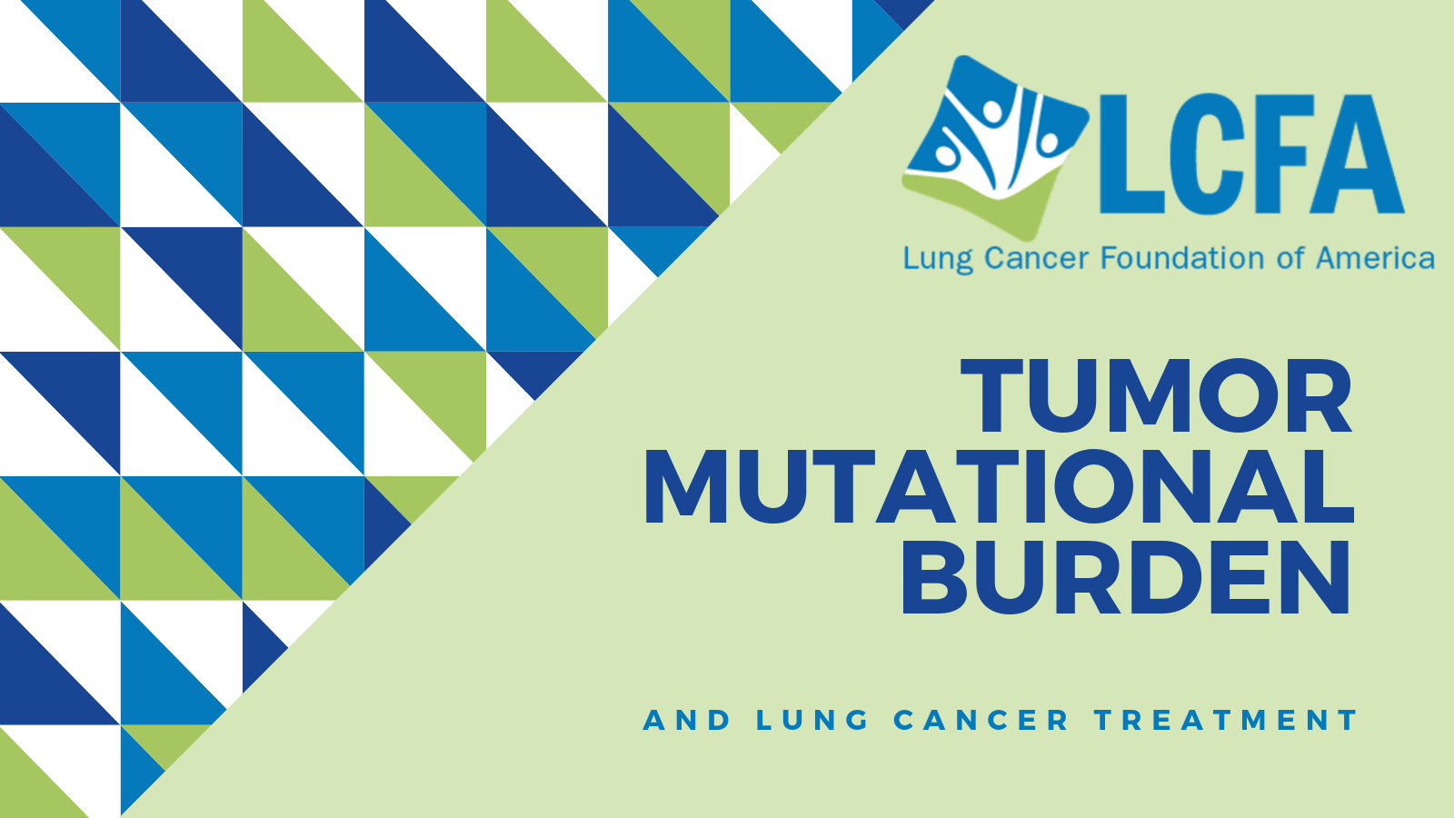 Tumor mutational burden and lung cancer treatment