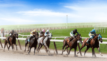 A Day at the Races scene