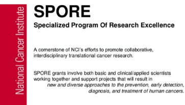 SPORE program slide