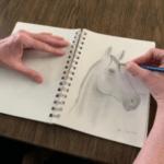 Carol Brickell sketches