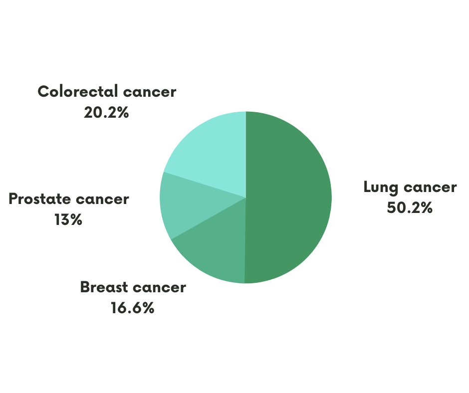 pie chart illustrating lung cancer death rate vs other cancers